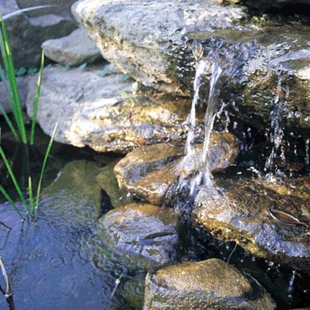 Vijver watervallen