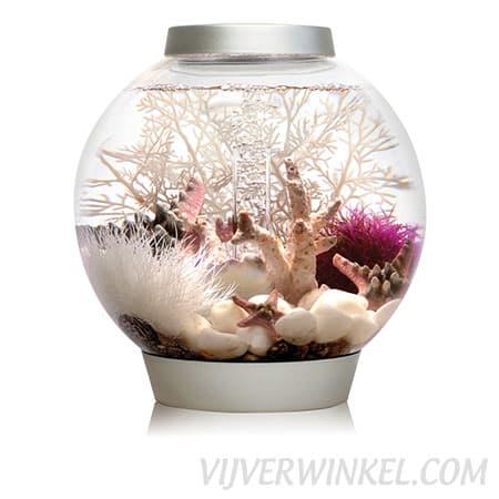 biorb_classic_15_LED_silver_vijverwinkel_com