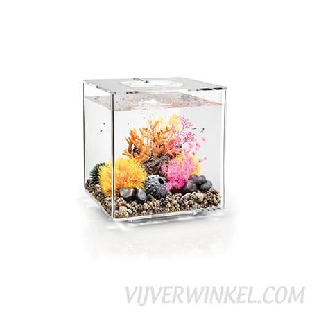 biOrb_cube_30_mcr_clear_vijverwinkel_com